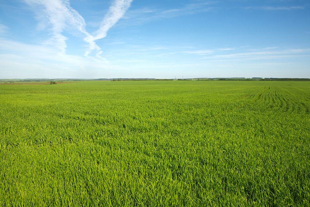 固定資産税と農地の関係