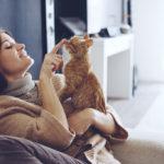 猫ブームはアパート経営にも波及?